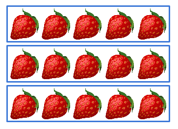 Image of rows of strawberries