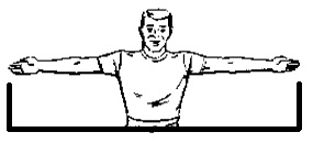 Image result for arm span
