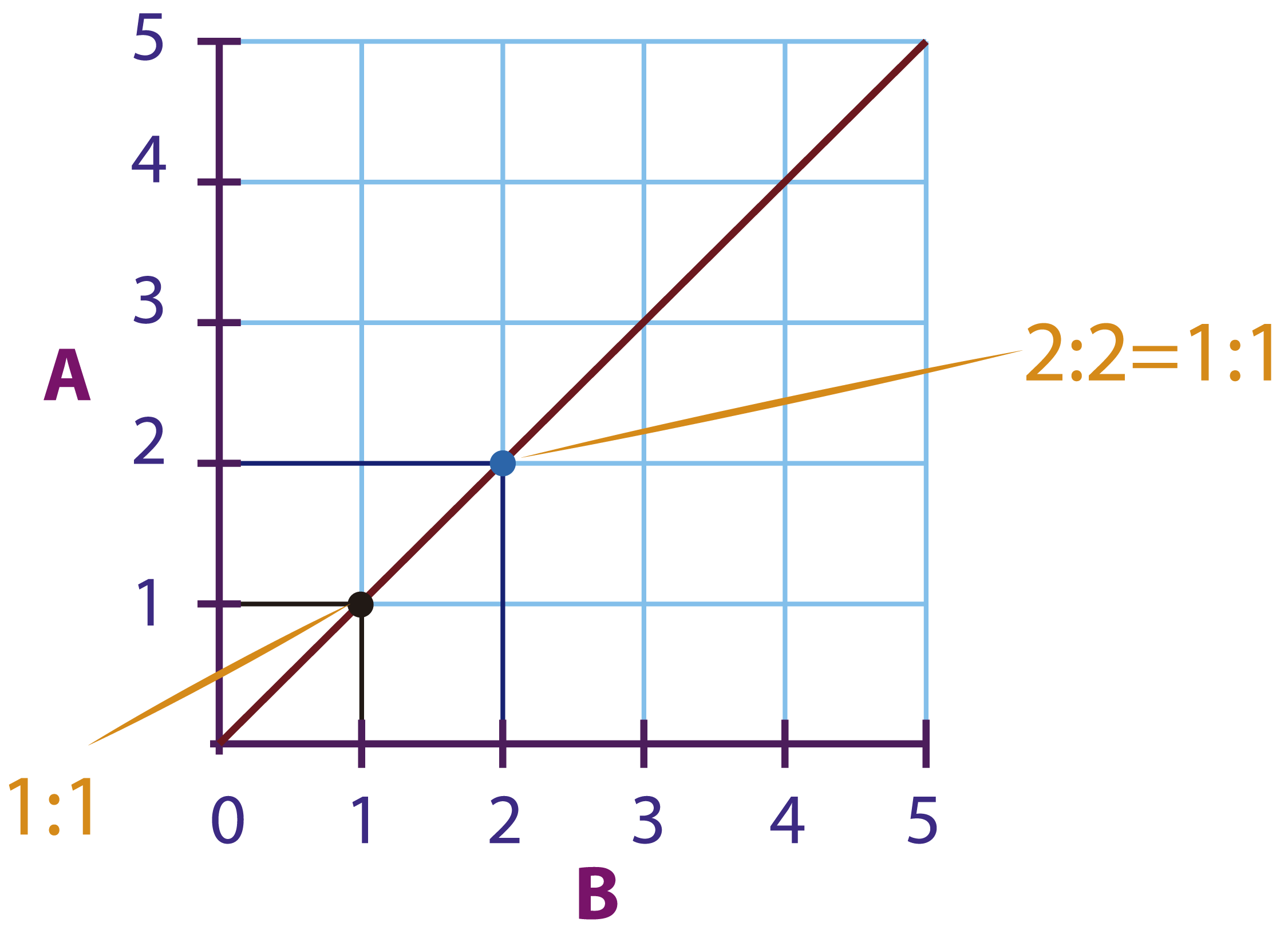 Keep It In Proportion Mathspace